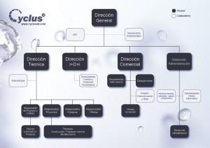 Organigrama Cyclus ID