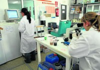 Laboratorio CyclusID